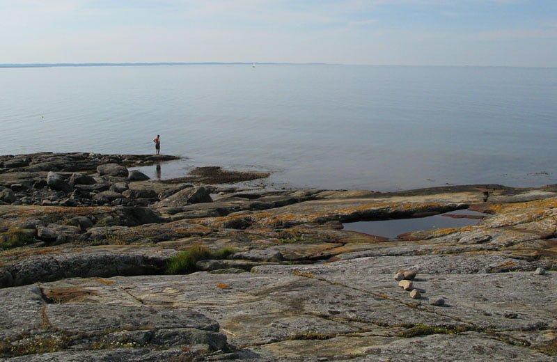 Den gamle och havet