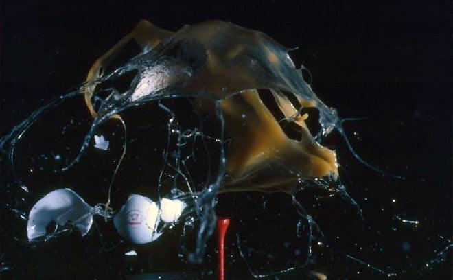 Ett ägg som låg på en golfpeg har exploderat mycket