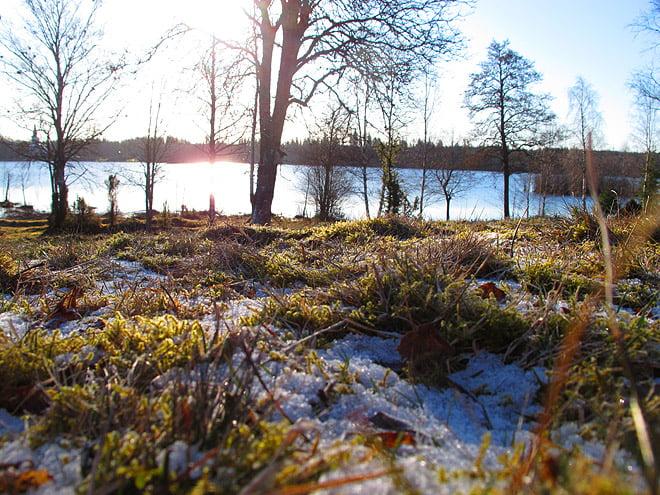 Morgon vid Almesåkrasjön