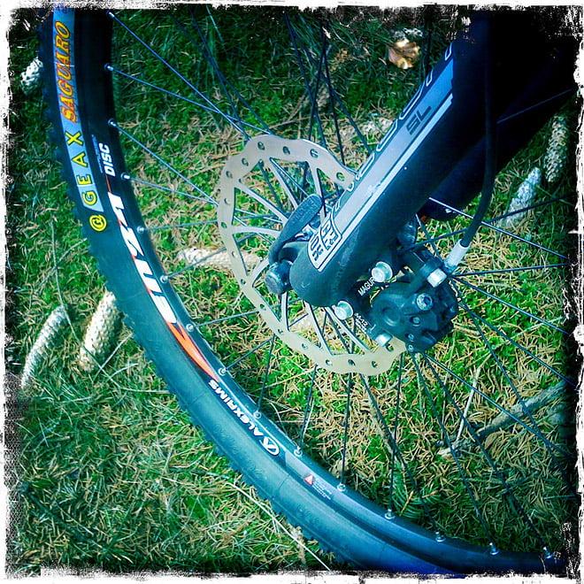 Igår blev det lite cykling i skogen, riktigt gött det med