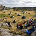 Många tält på ängen