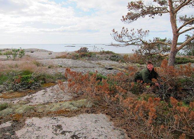 Letar gömma på Klåvskär