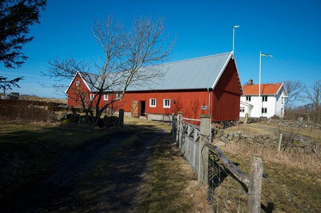 Mys på Vendelsö.