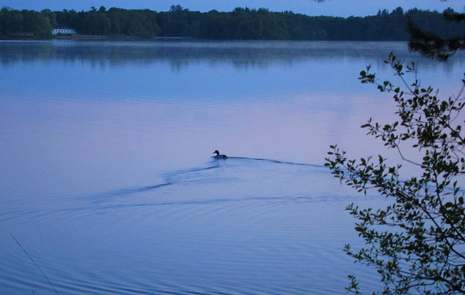 Mysigt att bara spana ut över sjön. Rössjöholm i bakgrunden