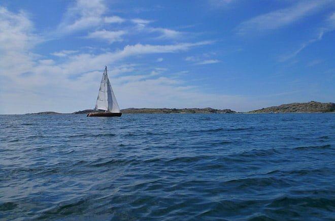 Vackra segelkanoter fick vi se flera stycken