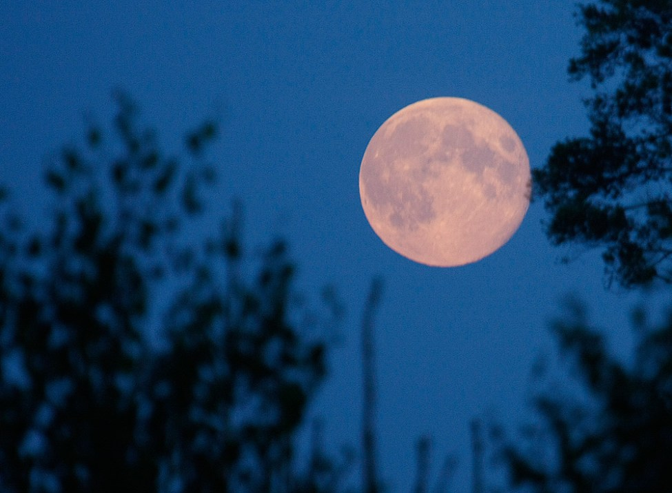 Stor måne på vägen hem