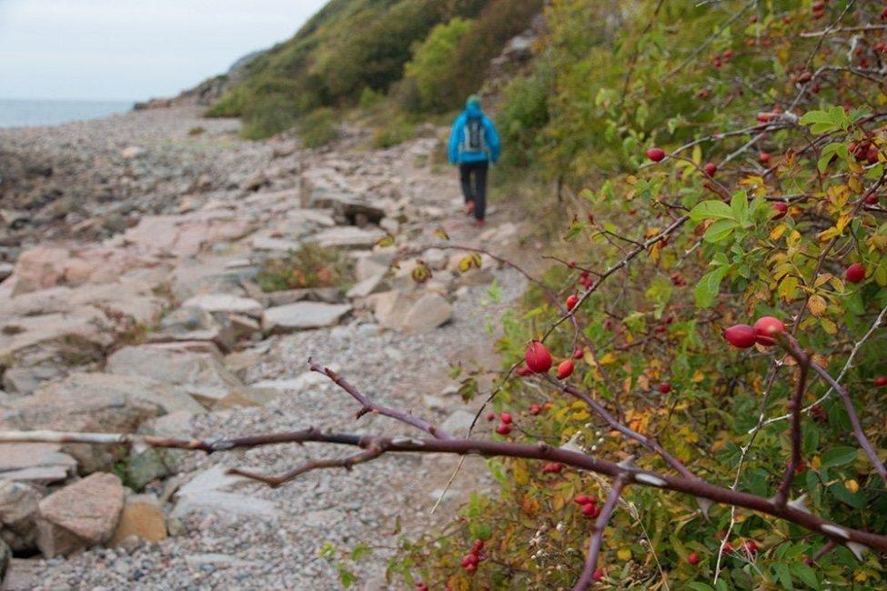 På väg mot Ransvik