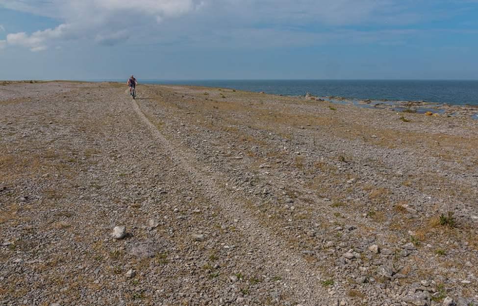 Go stenfältscykling på Fårös nordvästsida