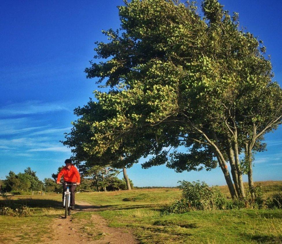 Somrig cykling