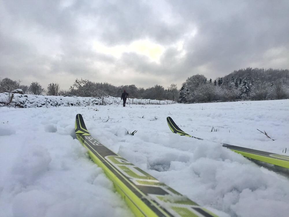 Skidor på Hallandsåsen i mitten av januari, inte riktigt lika fina spår som i Trysil men imponerande att de får ihop det då och då!