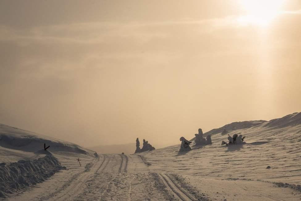Disigt kvällsljus på fin runda runt Skurufjellet. Längdskidåkning när den är som finasta