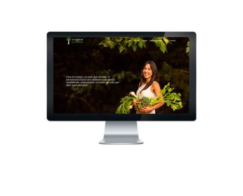 Creamos la página web de La Esencia de la nutrición