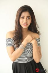 Actress Nabha Natesh Photos (10)