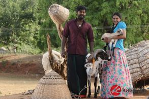 Billa Pandi Movie Photos (4)