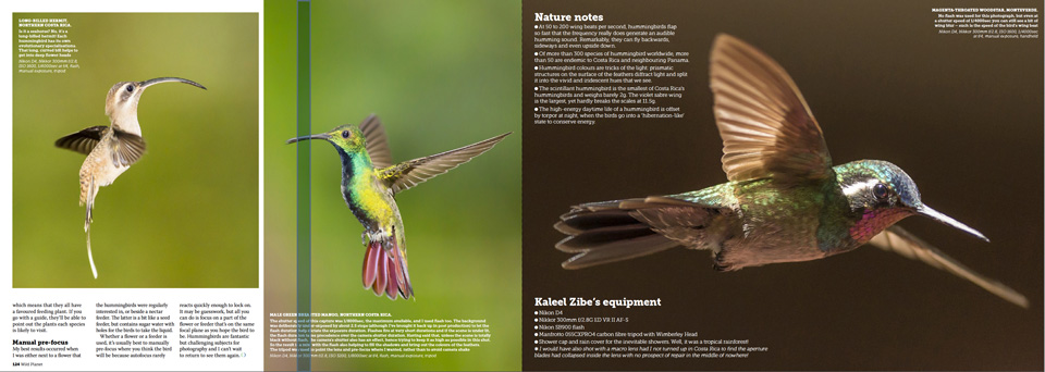 pages-5-8medium