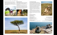 2013.09 LPM Wide Angle Wildlife article pages5-6