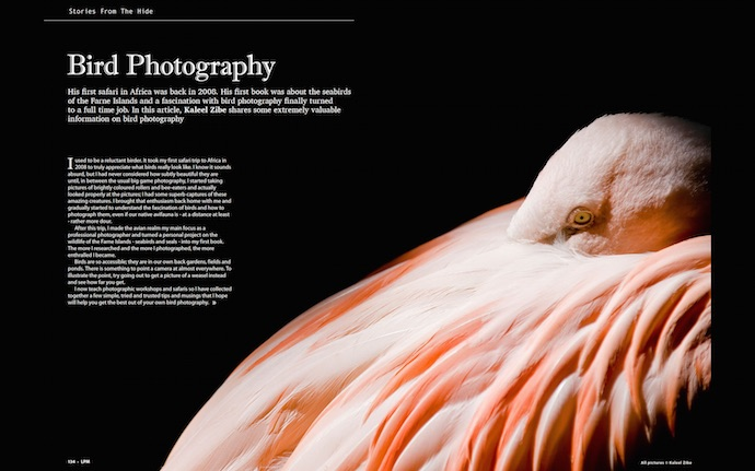 2013.04 LPM Bird Photography article pages1-2