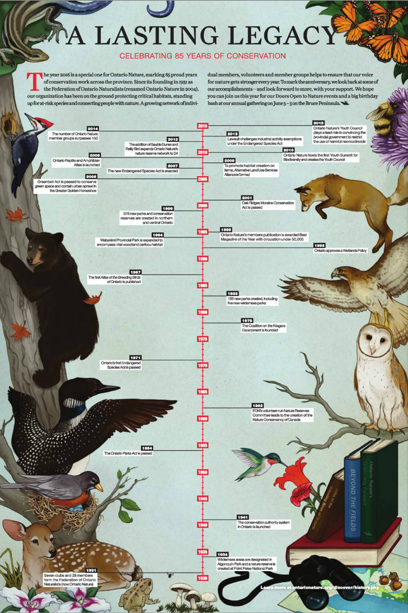 Ontario Nature's 85th anniversary timeline illustration by Kaleigh Bulford.