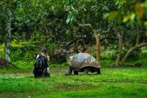 Why Ecotourism is Booming