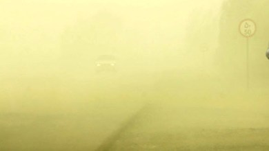 Photo of طوفان گرد و خاک در سیستان و بلوچستان ۲۶۴ نفر را روانه بیمارستان کرد