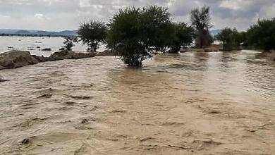 Photo of ادامه بحران سیل در سیستان و بلوچستان؛ هشدار درباره عفونت و خطر حمله گاندوها