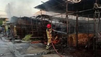 تصویر آتشسوزی در یک بازار گل در جنوب تهران؛ ۳۲ غرفه سوخت