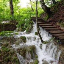 Les chutes de Plitvice en Croatie