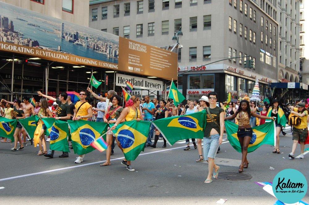 viva brésil