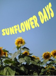 sunflowerdays.jpg