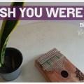 Wish You Were Gay - Billie Eilish