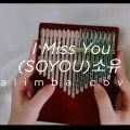 (SOYOU)소유 - I Miss You (Goblin OST)