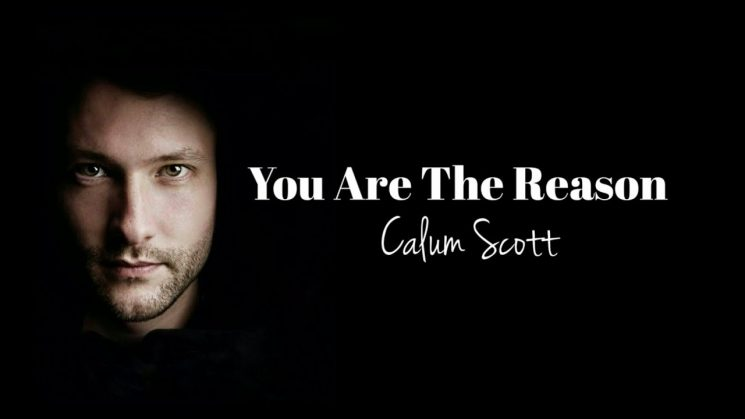 You Are The Reason By Calum Scott kalimba Tabs