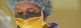 Procedures & Surgical Services