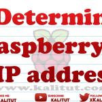 Determine Raspberry Pi IP address