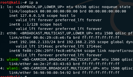 ip a command