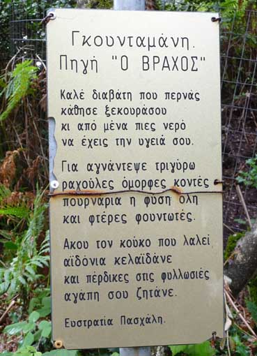 RAFTAIIKA_1