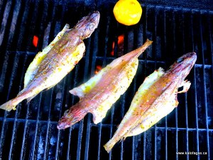 Grilled Butterflied Whiting With Lemon & Oregano