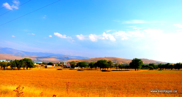 Amyteon-Agios Panteleimon vally, Florina