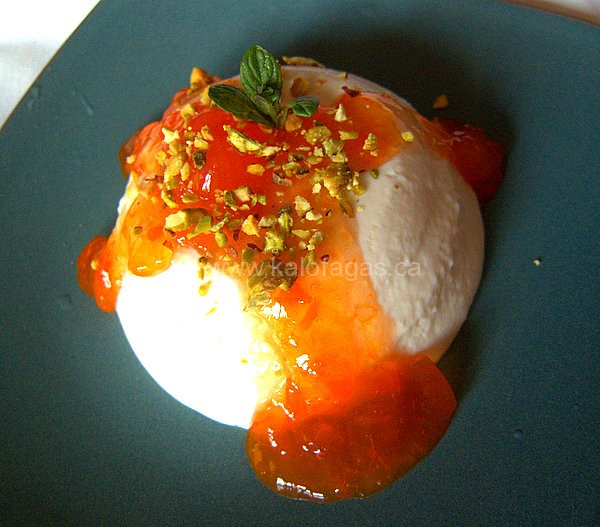 Greek Yogurt Panna Cotta With Apricot Preserve