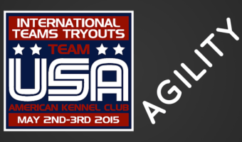 AKC International Team Tryouts 2015