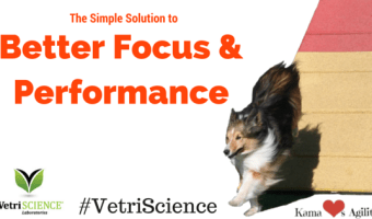 The Simple Solution to Better Focus & Performance