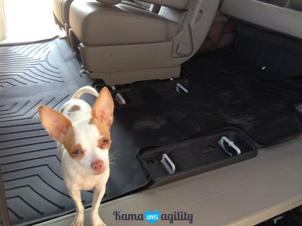 All weather flooring is a MUST for any roadtrips with dogs!