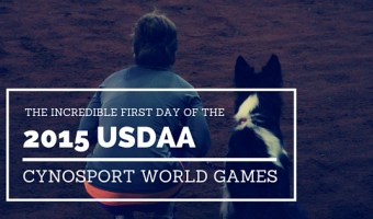 The Incredible First Day of the 2015 USDAA Cynosport World Games