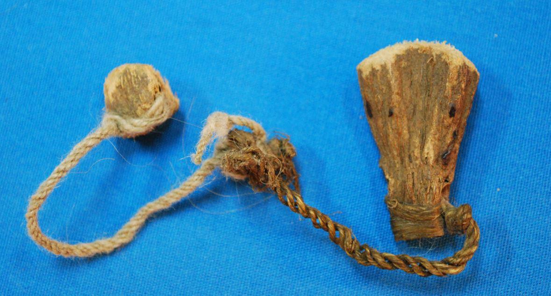 Plantas alucinógenas y antiguos ritos en Sudamérica