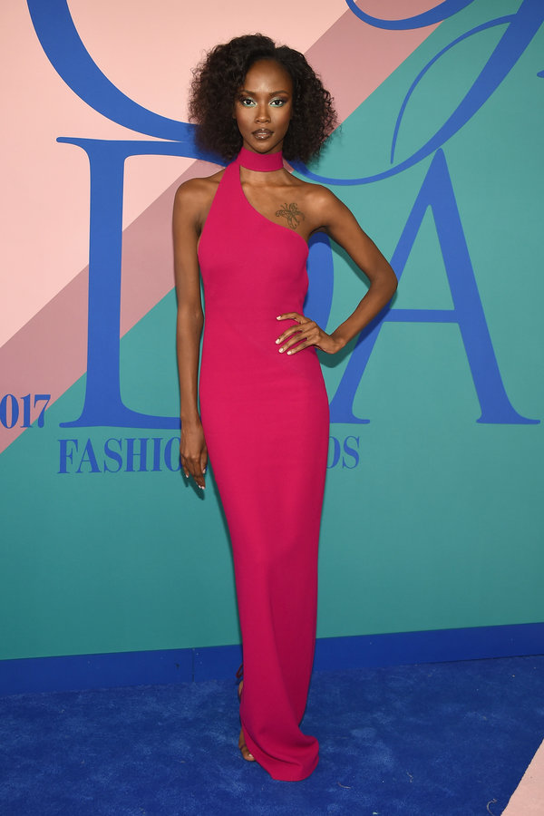 NEW YORK, NY - JUNE 05: Riley Montana attends the 2017 CFDA Fashion Awards at Hammerstein Ballroom on June 5, 2017 in New York City.  (Photo by Dimitrios Kambouris/Getty Images)