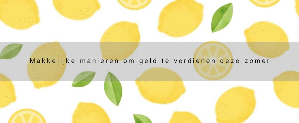 BANNER KAMER.NL