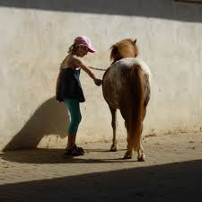 Image of Girl with Horse