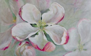 Apple tree blossom painting