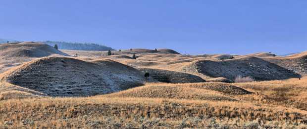 A Grasslands Loop 008 lr