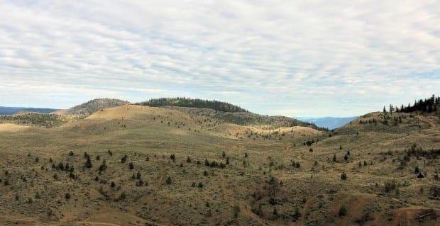 Batchelor Ridge Trek 004r